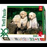 Trefl Pussel 160 Bitar Puppy Labradors