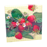 Ti-flair Matservett Strawberry Border