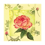 Ti-flair Matservett Enchanting Rose