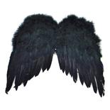 Den Goda Fen Vingar Svarta Fjädrar