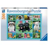 Ravensburger Pussel 500 Bitar Puppy Love