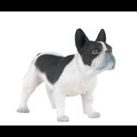 Papo Bulldog svart/vit