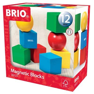 BRIO Magnetiska Klossar, 30123