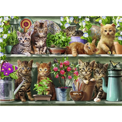 Ravensburger Pussel 500 Bitar Cats on the Shelf, 148240