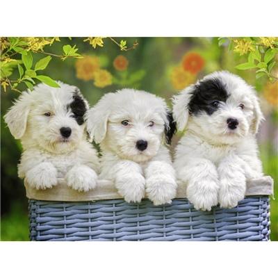 Ravensburger Pussel 200 Bitar XXL Cuddly Puppies, 127658