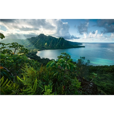 Ravensburger Pussel 5000 Bitar Hawaiian Viewpoint, 161065