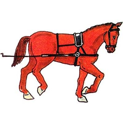 Prince August Karoliner Artillerihäst, 956K