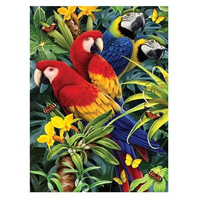 Royal & Langnickel Måla efter Nummer Majestätiska Macaws, PJS83-3T