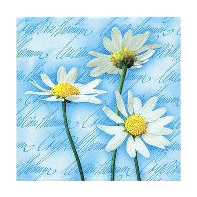 Ti-flair Matservett Blooming Daisies Blue, 357483